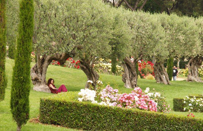 Парк Сервантеса в Барселоне