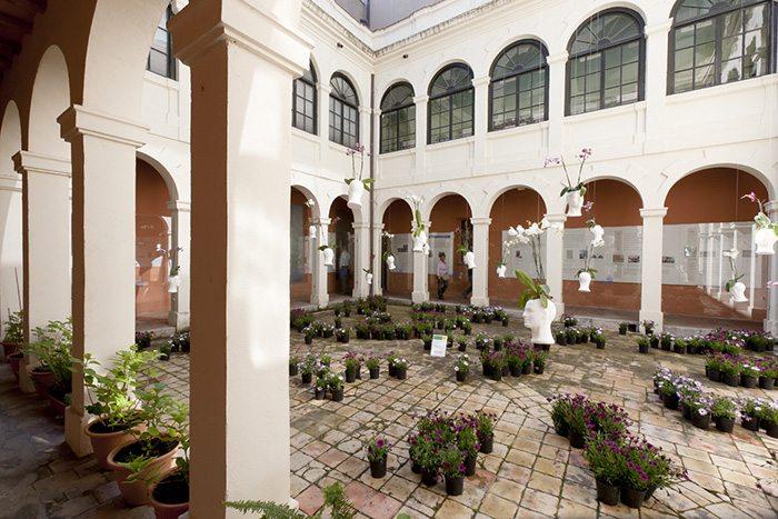 Музей истории города - Музеи Жироны