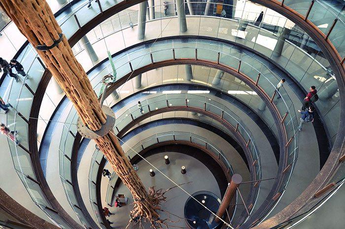 Музеи Барселоны: Музей CosmoCaixa