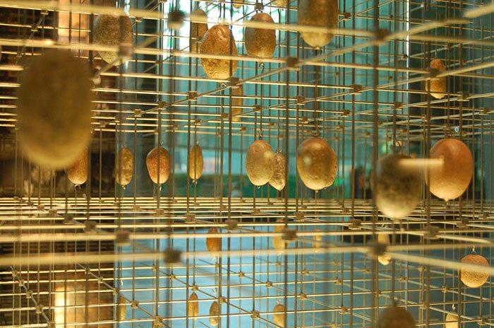 бесплатные посещения выставок и музеев Барселоны