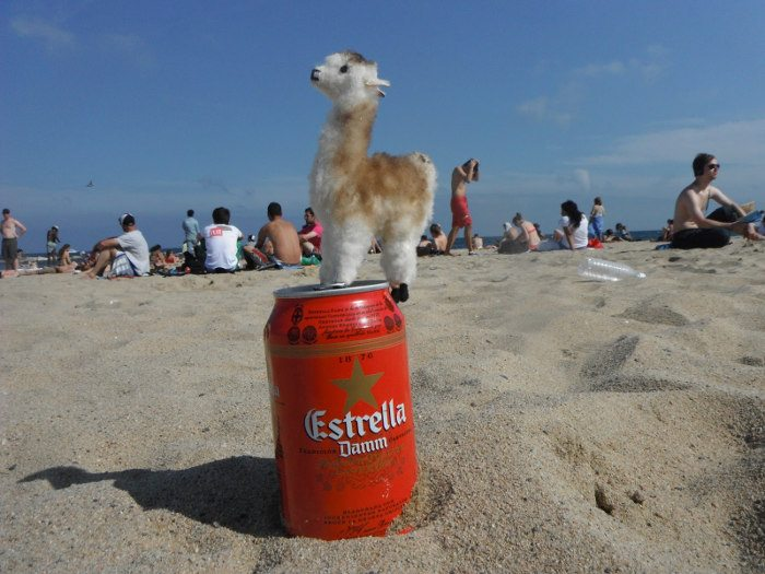 Сerveza-beer-cola-fanta-agua