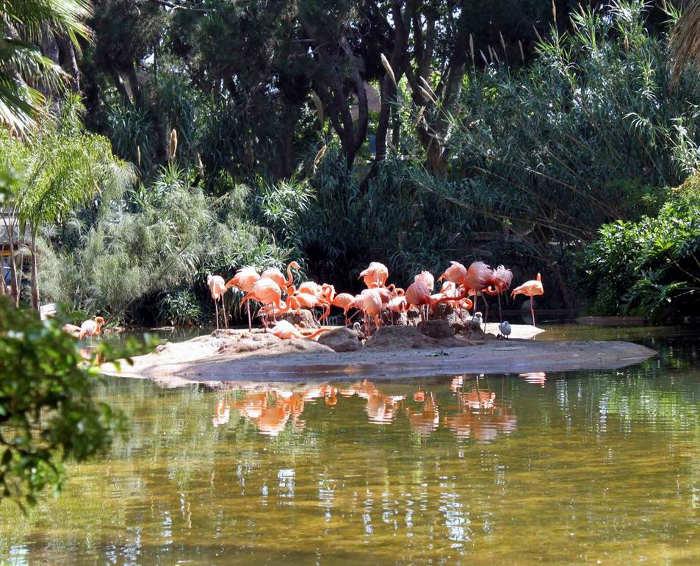 Зоопарк в Парке Цитадели