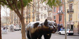 Самый большой кот Барселоны