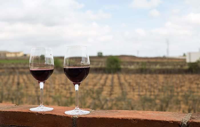 Испанское вино: полный гид