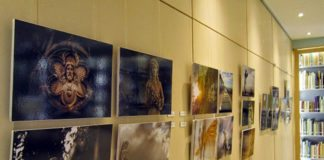 Картины из коллекции музея