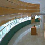 История Археологического музея