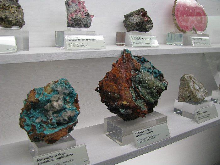 Экспонаты по минералогии и палеонтологии