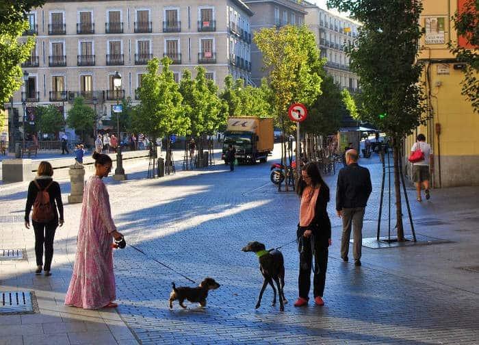 Жители Испании весьма отзывчивы