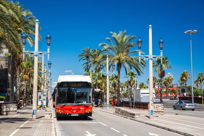 Автобусы Барселоны: все, что нужно знать
