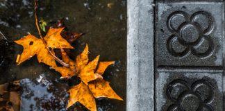 Осенняя Барселона